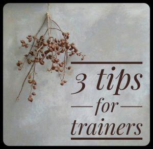 Three brain-friendly tips for trainers